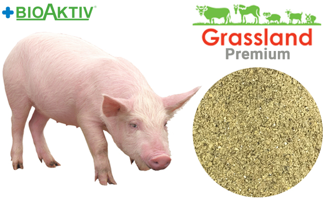 """Concentrate Grassland for pigs """"Grover/Finish"""" 15%/10% (Premium)"""
