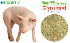 """Концентрат БМВД Grassland для свиней """"Стартовый"""" 20% (Премиум)"""