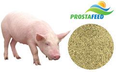 """Концентрат БМВД Prostafeed Extra для свиней """"Гровер/Фініш"""" 20%/15%"""