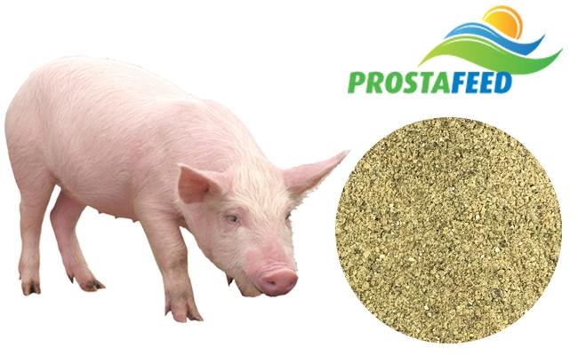 """Концентрат БМВД Prostafeed Extra для свиней """"Гровер/Финиш"""" 20%/15%"""