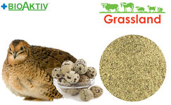 Концентрат БМВД Grassland для перепела в период яйцекладки 15% (Стандарт)