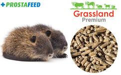 Compound feed Grassland for nutria
