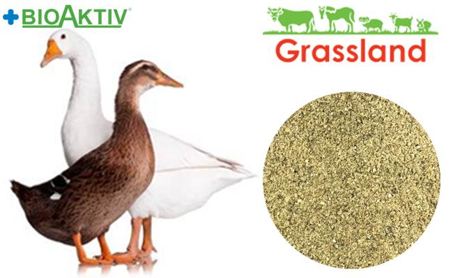 """Концентрат БМВД Grassland для уток и гусей """"Гровер/Финиш"""" 20%/15% (Стандарт)"""