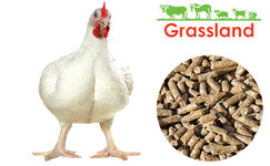 """Комбікорм Grassland для бройлерів """"Фініш"""" (Стандарт)"""