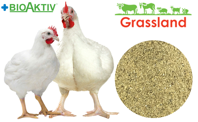 """Концентрат БМВД Grassland для бройлеров """"Гровер/Финиш"""" 35%/30% (Стандарт)"""