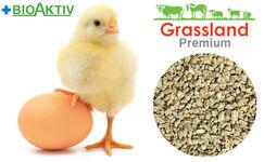 """Комбікорм Grassland для курчат бройлерів """"Стартовий"""" (Преміум)"""
