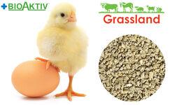 """Комбикорм Grassland для цыплят бройлеров """"Стартовый"""" (Стандарт)"""
