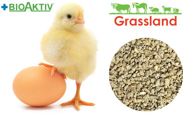 """Комбікорм Grassland для курчат бройлерів """"Стартовий"""" (Стандарт)"""