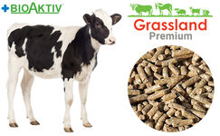 Compound feed Grassland for calves up to 200 kg. (Premium)