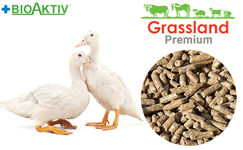 """Compound feed Grassland for ducks and geese """"Grover"""" 21-85 days (Premium)"""