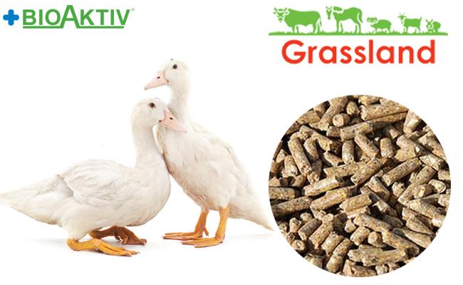 """Комбікорм Grassland для качок та гусей """"Гровер"""" 21-85 днів (Стандарт)"""