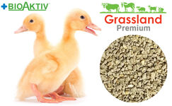 """Compound feed Grassland for ducks and geese """"Starting"""" 1-21 days (Premium)"""