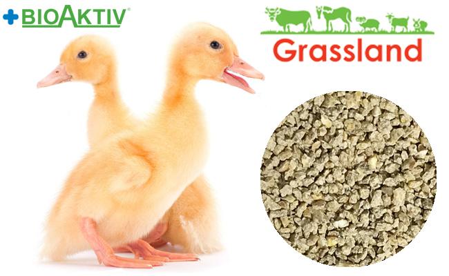 """Комбікорм Grassland для качок та гусей """"Стартовий"""" 1-21 днів (Стандарт)"""