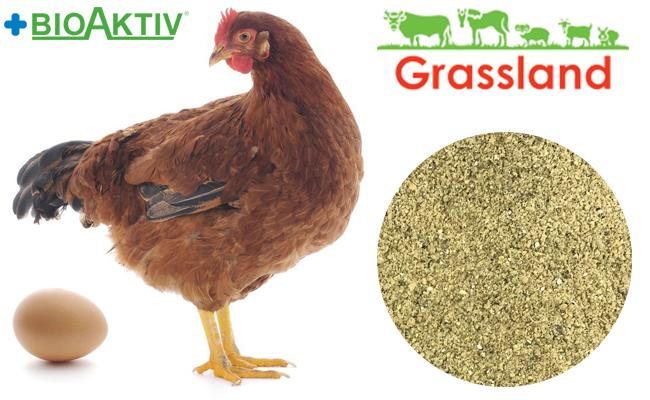 "Концентрат БМВД Grassland для курей несучок ""Період яйцекладки"" 15% (Стандарт)"