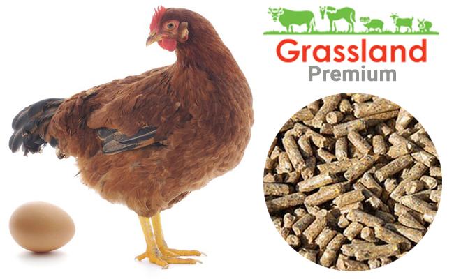 """Комбікорм Grassland для курей несучок """"Період яйцекладки"""" (Преміум)"""