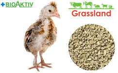 "Compound feed Grassland for laying hens ""Grover"" (Standard)"