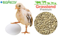 "Compound feed Grassland for chickens of the layer hens ""Starting"" (Premium)"