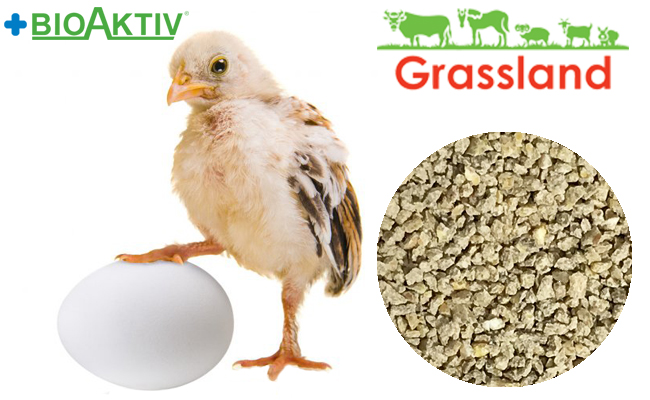 """Compound feed Grassland for chickens of the layer hens/Redbro """"Starting"""""""