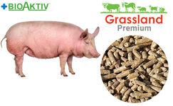 """Комбікорм Grassland для поросят """"Фініш"""" 100% (Преміум)"""
