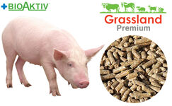 """Compound feed Grassland for pigs """"Grover"""" 100% (Premium)"""