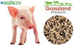 """Compound feed Grassland for suckling piglets """"Prestarter"""" 100% (Premium)"""