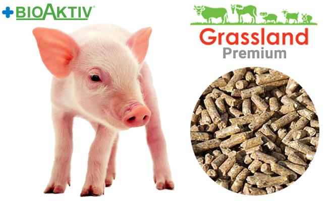 "Комбикорм Grassland для поросят-сосунов ""Престартер"" 100% (Biomix)"