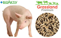 "Compound feed Grassland for pigs ""Starting"" 100% (Premium)"