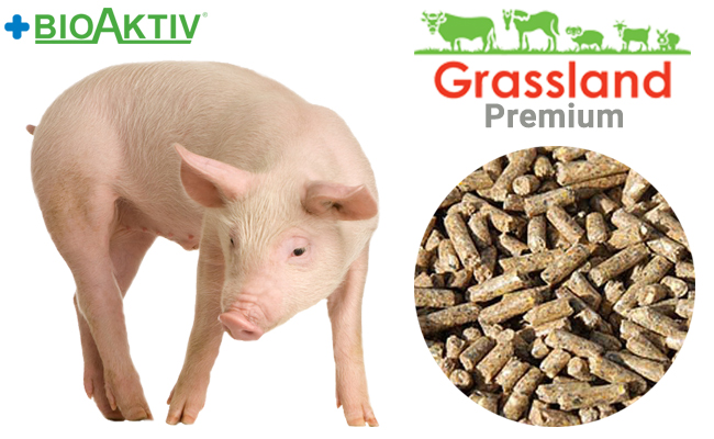 """Compound feed Grassland for pigs """"Starting"""" 100% (Premium)"""