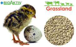 "Compound feed Grassland for quail ""Starting"" (Standart)"