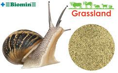 Комбікорм Grassland для маточного поголів'я равликів (Стандарт)