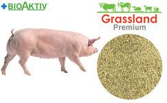 Концентрат БМВД Grassland для супоросных свиноматок 20% (Премиум)
