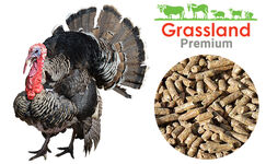 "Compound feed Grassland for turkeys ""Finish"" (Premium)"
