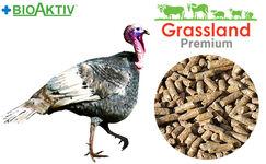 "Compound feed Grassland for turkeys ""Grover"" (Premium)"