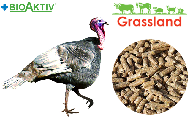 "Compound feed Grassland for turkeys ""Grover"" (Standard)"