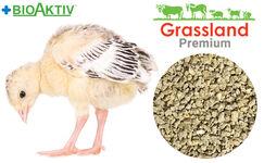 """Compound feed Grassland for turkeys """"Prestarting"""" (Premium)"""