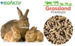 Комбікорм Grassland для кролематок (Преміум)