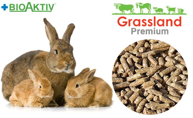 Комбикорм Grassland для кролематок (Премиум)