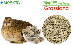"""Compound feed Grassland for quail """"Egg laying period"""" (Standart)"""
