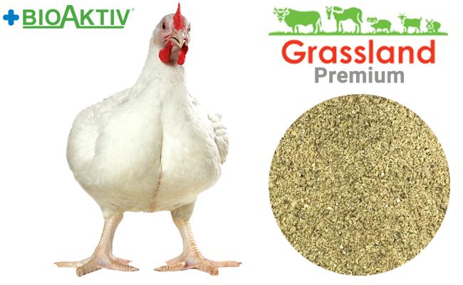 """Премикс Grassland для бройлеров """"Финиш"""" 2,5% «Индекс П» (Премиум)"""