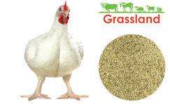 """Премікс Grassland для бройлерів """"Фініш"""" 2,5%  «Профі»"""