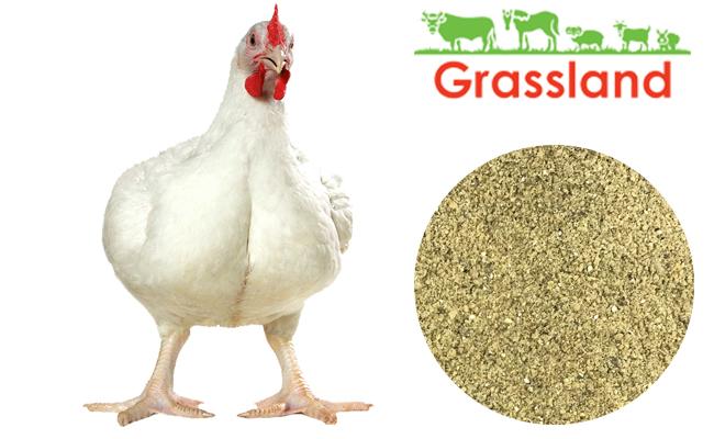"""Премикс Grassland для бройлеров """"Финиш"""" 2,5% «Профи»"""