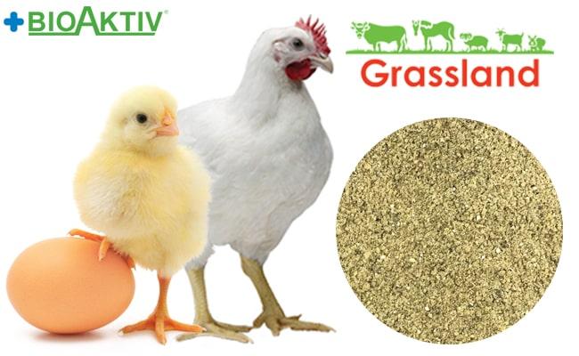 """Премикс Grassland для бройлеров """"Старт/Гровер"""" 2,5%/2,0% «Индекс П» (Премиум)"""