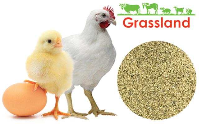 """Премикс Grassland для бройлеров """"Старт/Гровер"""" 2,2%/2,0% «Профи»"""
