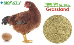 """Премікс Grassland для курей несучок """"Період яйцекладки"""" 2% (Преміум)"""