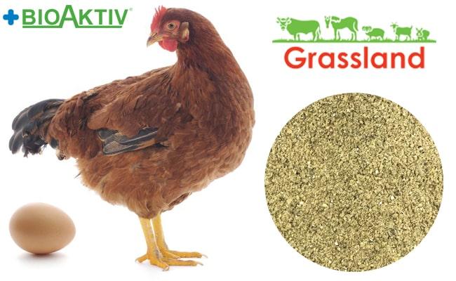 """Премикс Grassland для кур несушек """"Период яйцекладки» 2% (Премиум)"""