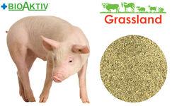 """Премікс Grassland для свиней """"Стартовий"""" 4%"""