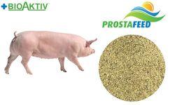 Премікс Prostafeed для супоросних свиноматок 3% (Преміум)