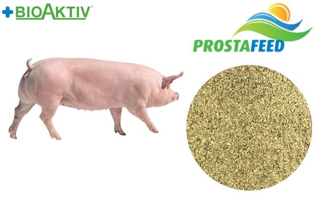Премикс Prostafeed для супоросных свиноматок 3% (Премиум)
